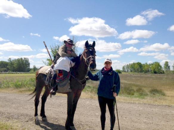 Horse Pilgrim